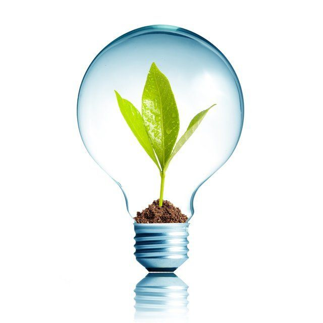 Switch Energy Supplier To Bulb And Earn £75