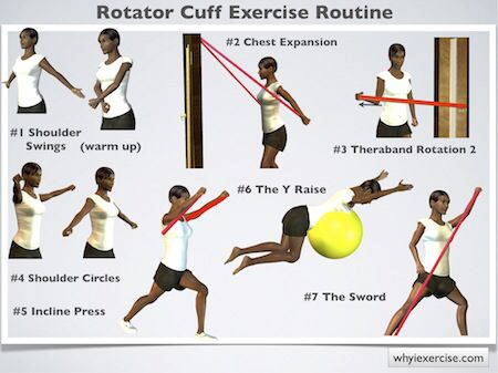 Best 26 Physiotherapy Exercises For Shoulder Images On