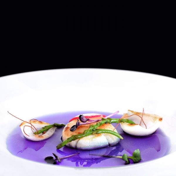 Red Cabbage Consomme, Scallop, Salicornia, Onion and Radish - The ChefsTalk Project