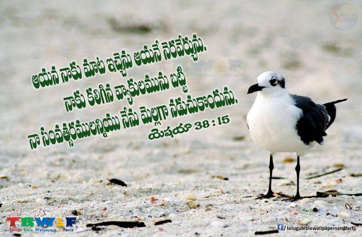 Isaiah 38:15