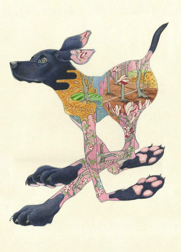 Black Labrador Running - Print | Animal Cards and Prints & Screen prints | The DM Collection --This is such a happy and fluid image.