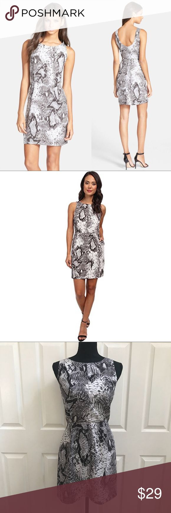 Nordstrom BB Dakota Snake Print Shift Dress Sold out style on Nordstrom.com Adorable sleeveless dress with low back- Snake gray and white print. Size 4 Worn once, like new condition  A bold snakeskin print covers a smooth shift dress that tastefully shows off skin with a scooped back neckline. Hidden back-zip closure. Lined. 100% polyester. BB Dakota Dresses Mini