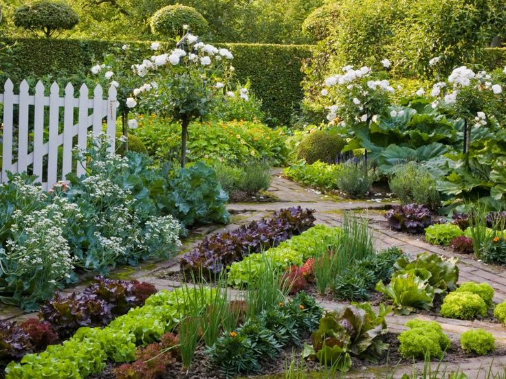 668 best images about beautiful vegetable gardens on for Fruit and vegetable garden design