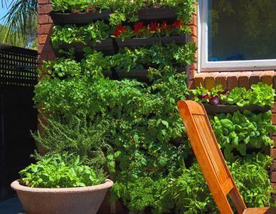 69 best Vertical Garden Ideas images on Pinterest Vertical