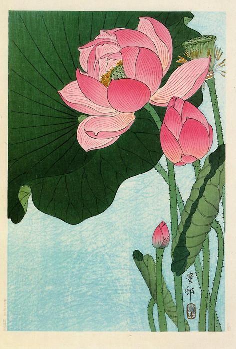 zijperspace:    'Flowering Lotus' - Ohara Koson.