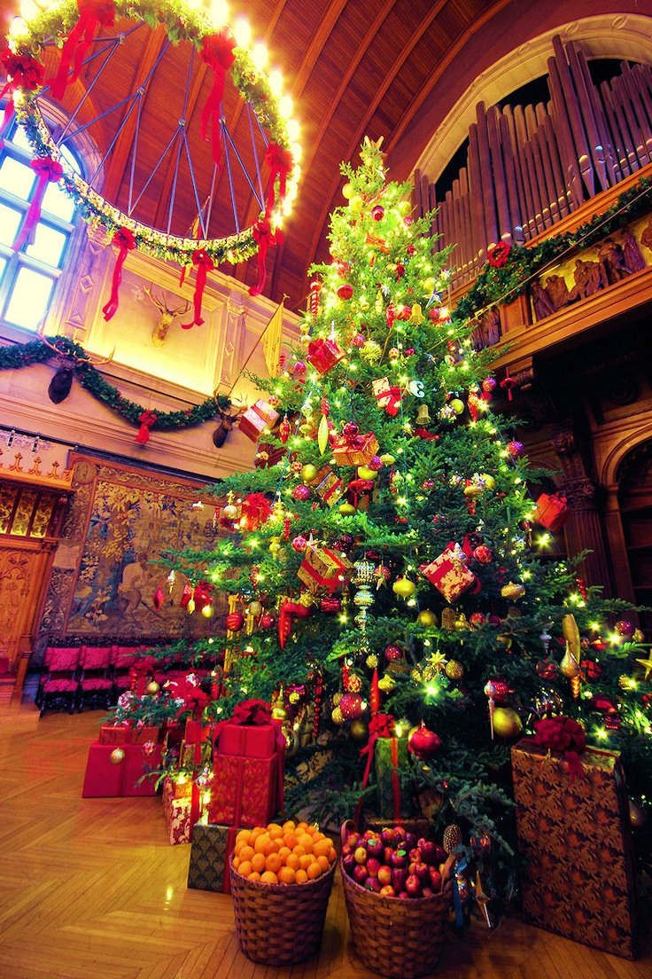 Christmas at biltmore house christmas decorations inside b -  Christmas Tree In The Banquet Hall Of Biltmore House Guide Http