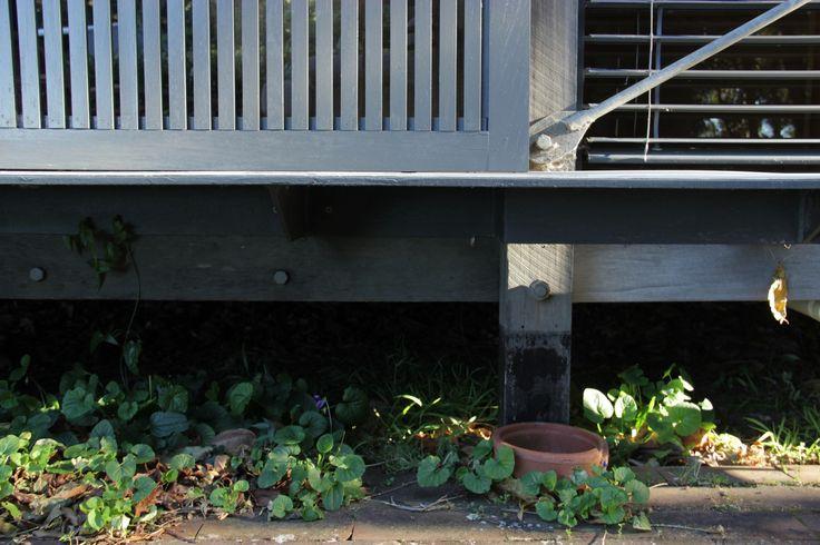 Fredericks House. Jamberoo New South Wales- Australia / Glenn Murcutt architect (Ph: Paula Herrero - 2014)