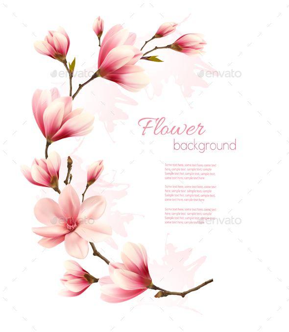 Pink Magnolia Branch Vector