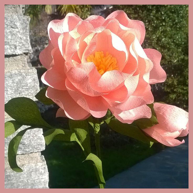 Peony. # peonia # # crepe paper flowers #