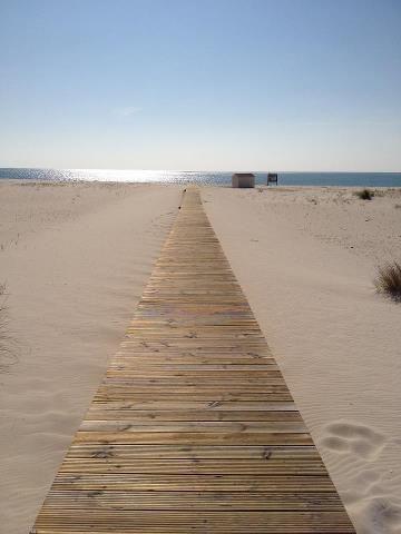 Comporta Beach             Bom dia... Uma das praias mais bonitas de Portugal.