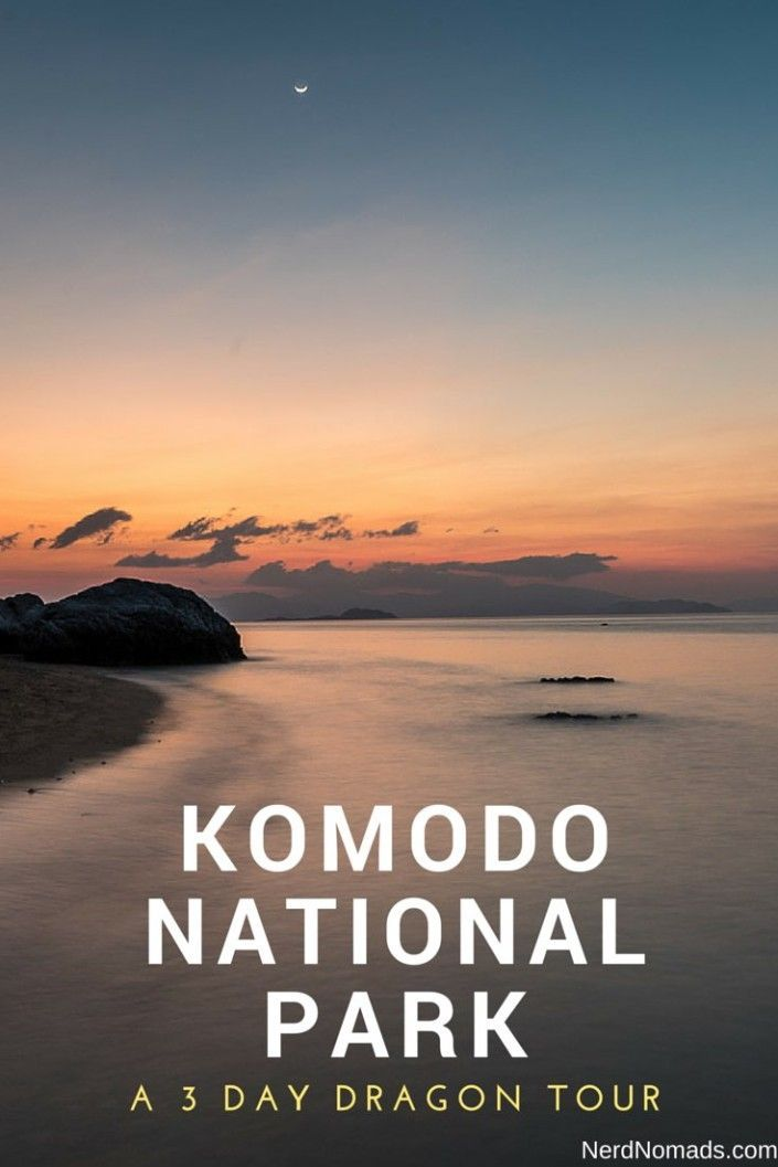 In search of the wild Komodo Dragon - A 3-day boat trip through Komodo National Park, Indonesia.
