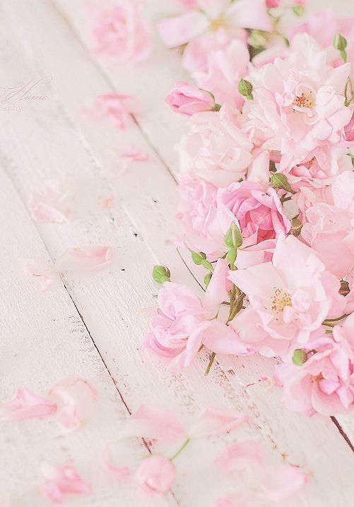 Года открытки, картинки цветы нежные вертикальные