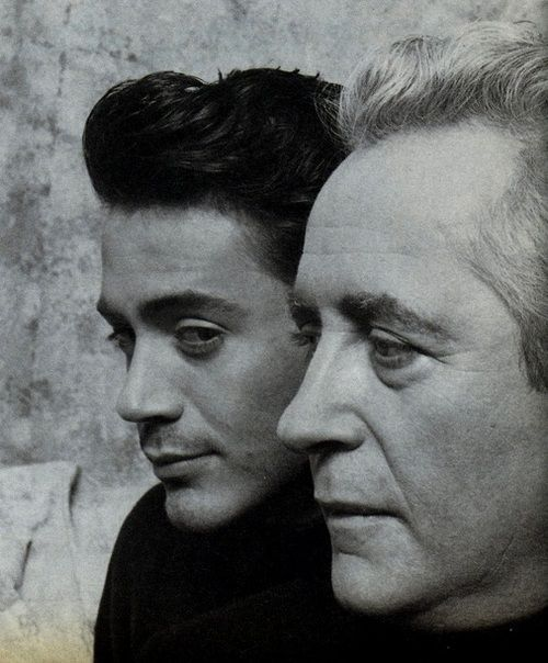 Son and dad: Robert Downey Jr. and Robert Downey Sr.
