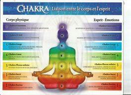 Je vous propose une série de sept articles dans lesquels je vais associer les chakras et les flammes sacrées, afin de vous fournir des outils pratiques pour votre travail intérieur, qui vont vous permettre de faire évoluer votre structure énergétique. Vous pourrez alors interagir en conscience avec les sept premiers plans de l'être, en ré-harmonisant chacun de vos centres et en vous alignant avec les attributs divins de chaque flamme de Dieu. Je vous rappelle que la Vie est une pratique, il…