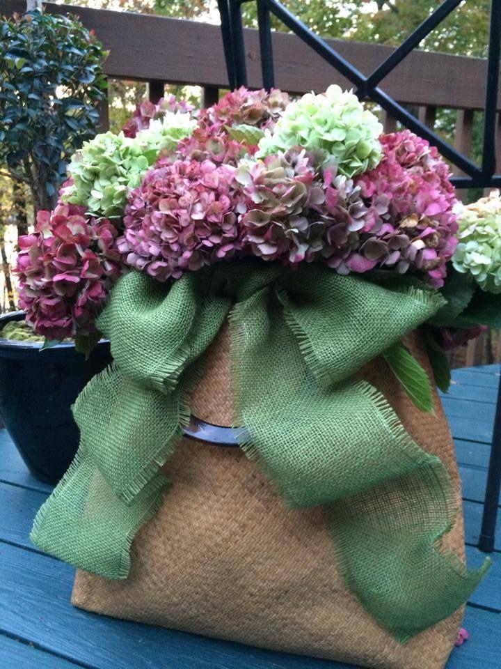 Garden's last glory by Valerie Parr Hill