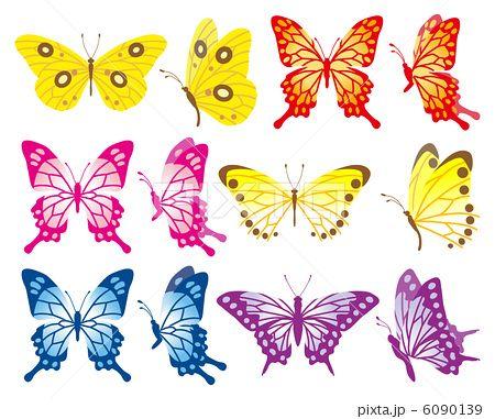 蝶セット/6種類