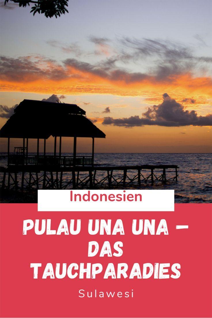 Pulau Una Una Das Tauchparadies Auf Sulawesi Indonesien Indonesien Urlaub Indonesien Rundreise