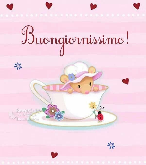 17 best images about buongiorno on pinterest facebook for Buongiorno divertente sms