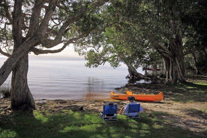 Lakeside at Mungo Brush camping area, Myall Lakes National Park (Image: Shane Chalker)