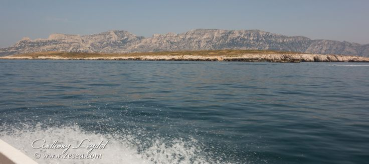 Sites de plongée de Marseille, de la Côte-Bleue à la Ciotat - Le blog de la plongée Bio #plongée #Marseille #Calanques