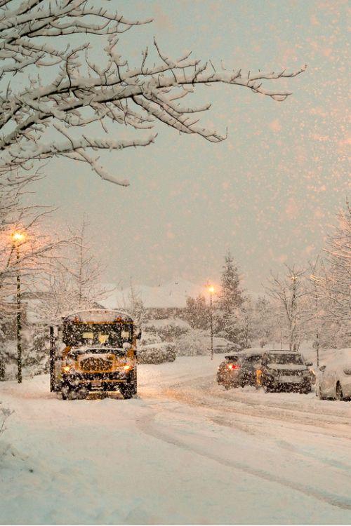 Coquitlam, British Columbia, Canada ❄