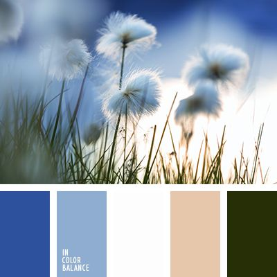 85 best images about color palettes on pinterest colour The color blue makes you feel