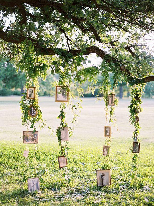 family tree wedding backdrop ideas