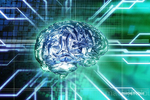 Brain made of glass and circuit board on Behance