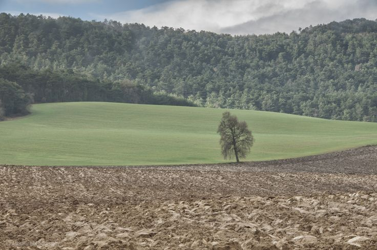 Small landscape by Asier Montoia on 500px