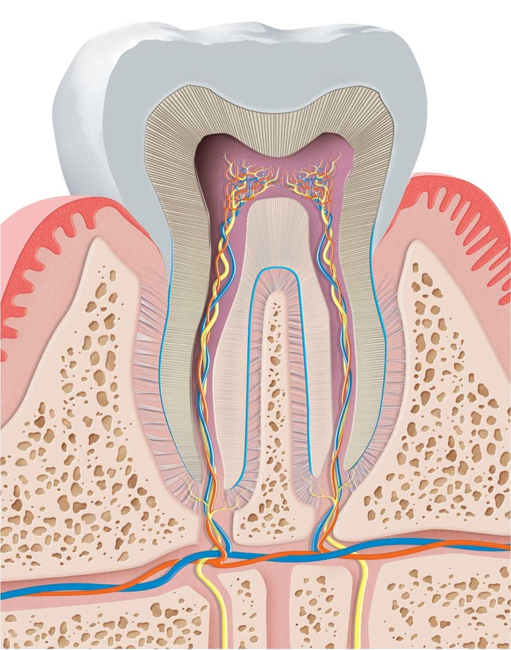 how to get rid of periodontal disease