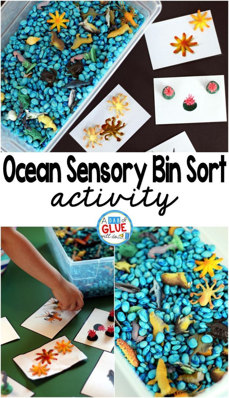 Water and ice activities summer camp at home with 12 weeks of easy - Ocean Sensory Bin Sorting Activity