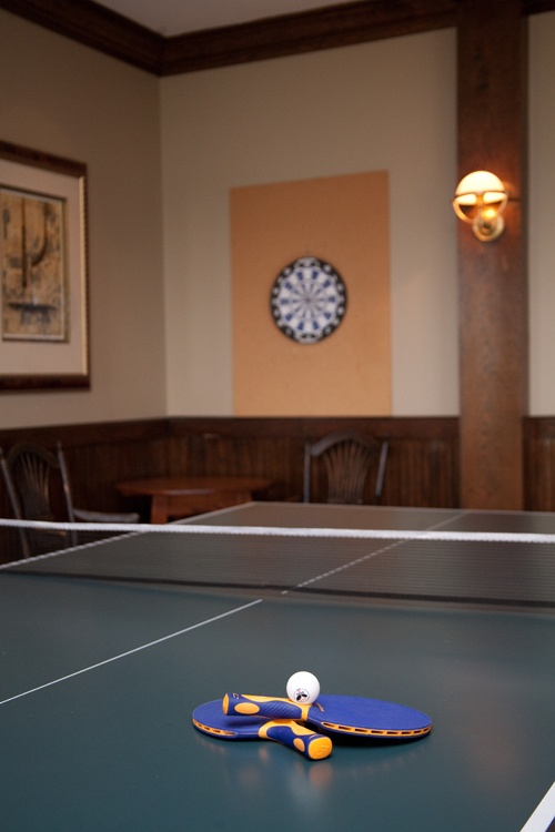 75 best images about ping pong on pinterest ping pong - How much space for a ping pong table ...