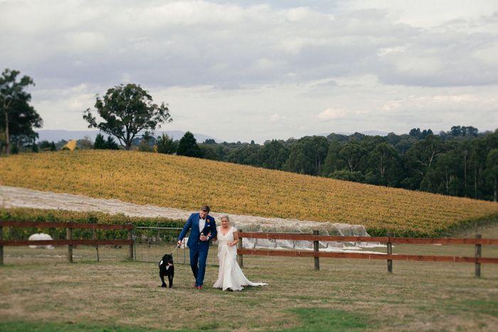 Dog in wedding photos captured by Sarah Godenzi @ Yarra Ranges Estate