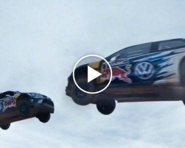 Fernando Alonso Acidentalmente Atinge 2 Pássaros De Uma Só Vez a Mais De 300 km/h