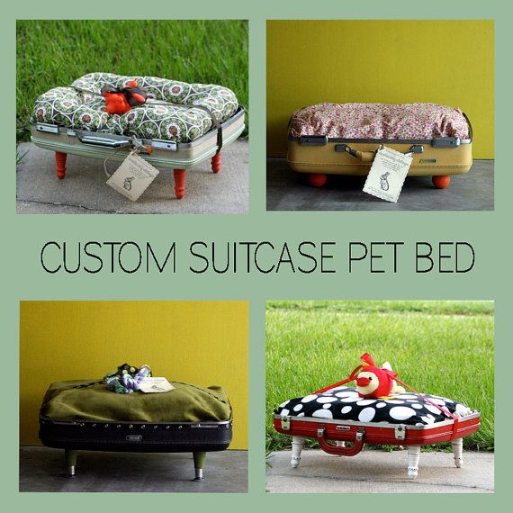 suitcase pet bed- Lola would love this! She already tries to sleep in our suitcases if we leave them out!!