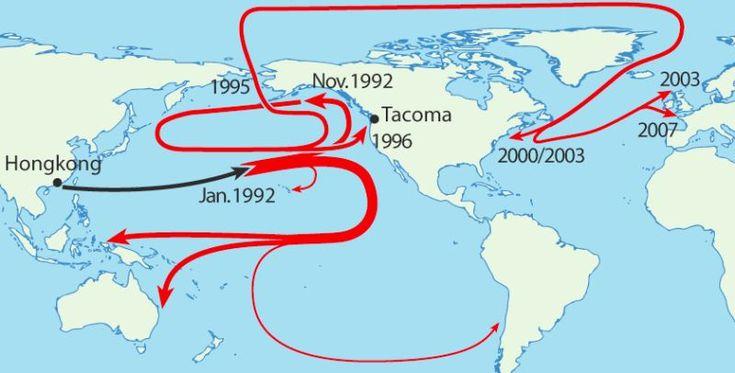 Kaza Sonucu Denize Dökülerek Bilime Hizmet Eden Oyuncak Ördeklerin Tuhaf Hikayesi - Ekşi Şeyler