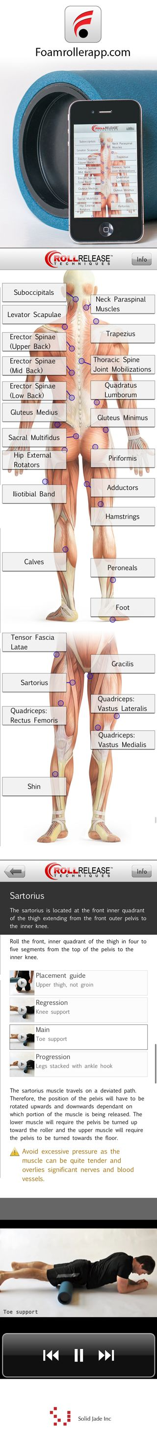 77 best images about a&p on pinterest | foot anatomy, muscle, Muscles