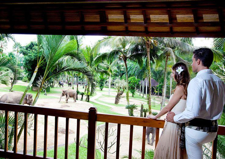 Elephant Safari Park Lodge – Elephant Safari Park Lodge