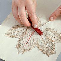 В каждом рисунке – листья. Шаг 1