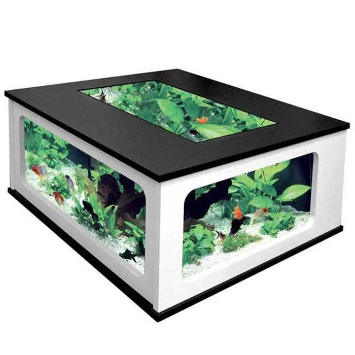 25 best ideas about cheap fish tanks on pinterest tank stand hard fack and millionaire houses - Fish tank coffee table cheap ...