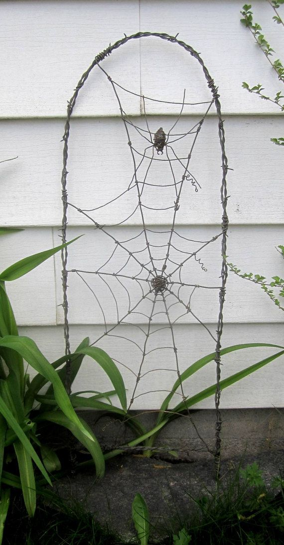 spider in a tattered web barbed wire garden trellis made