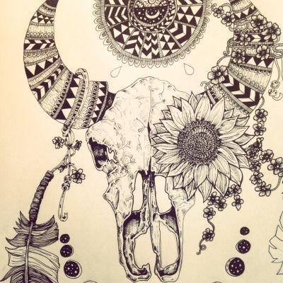 cow skull   Tumblr