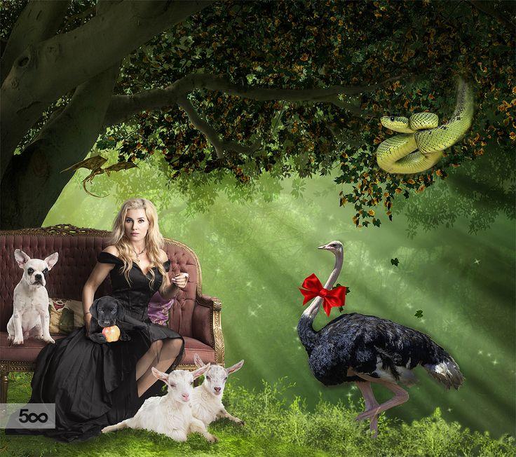 Paradise by KimFelizia Paulin on 500px