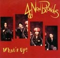 4 Non Blondes: What's Up {image courtesy Interscope} #90srave #unbridled