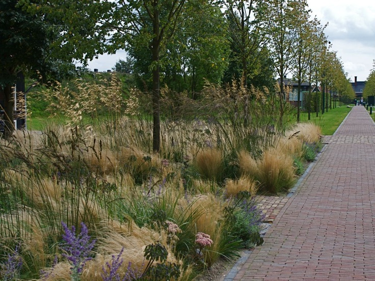 256 best landscaping images on pinterest gardens for Piet oudolf landscape architect