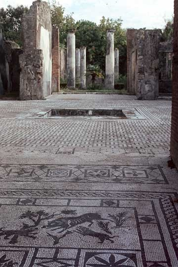 Pompeii 'House of the Wild Boar' Casa del Cinghiale - detail mosaic floor (before 79AD)