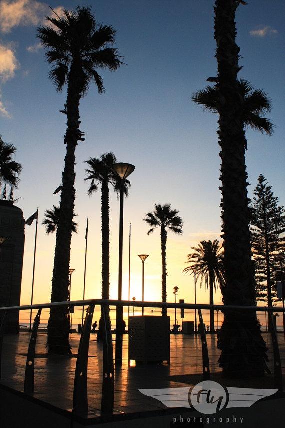 sunset silhouette in Adelaide, Australia