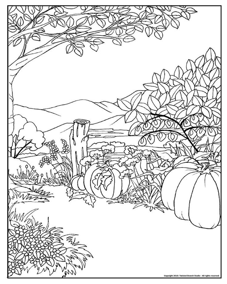 spring equinox coloring pages | Pin by Cindy Aitchison on Coloring | Coloring Pages, Color ...