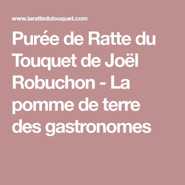 Purée de Ratte du Touquet de Joël Robuchon - La pomme de terre des gastronomes