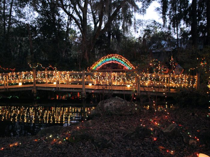 This state park is always full of natural beauty, but it shines even brighter when decorated with over half a million dazzling lights.